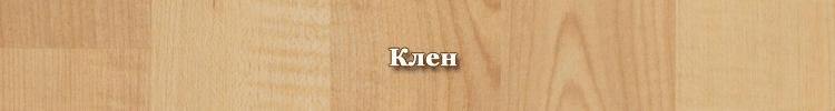 Порода древесины - клен